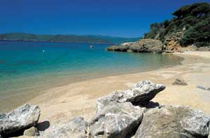 one of the beaches of the Elba island